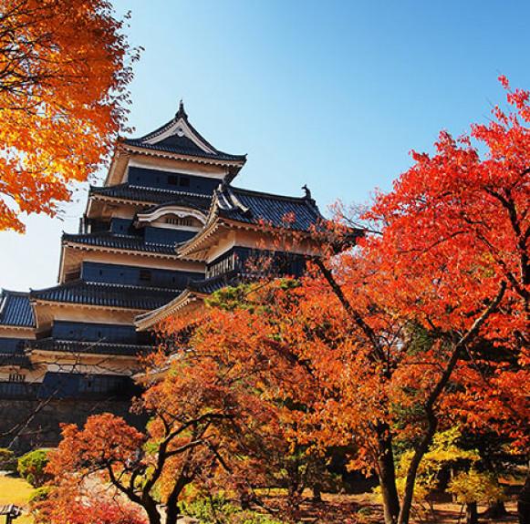 Cẩm nang du lịch Nhật Bản mùa thu ngắm lá phong rực rỡ
