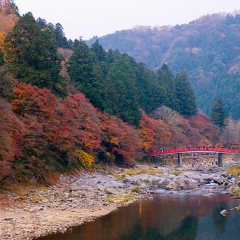 Thung Lũng Korankei  Xứ Sở Của Mùa Thu Nhật Bản